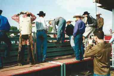 Cowboys around the bull pen, Mountain View County Fair and Rodeo, Olds, Alberta